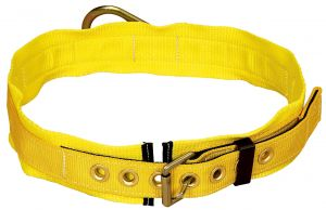 3M™ DBI-SALA® Delta™ Tongue Buckle Belt image